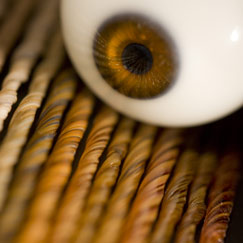 Close-up of a glass eye on brown glass sticks