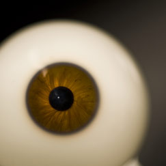 Frontal close-up of a glass eye with a brown iris